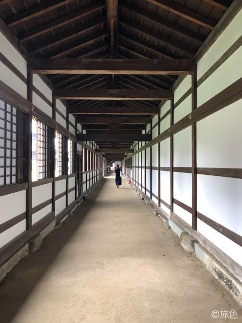 富山イラスト旅④