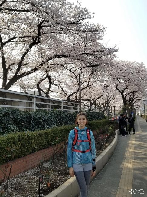 鈴木ちなみのランニング旅~荒川線と桜のおいしい関係!~②