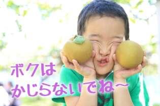 子連れで三重の梨狩りへ 松阪牛も味わう日帰り旅
