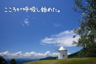 高速船&バスで移動 小豆島で癒しの1人旅