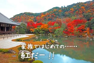 小さい子連れでもOK 京都で紅葉狩りの旅