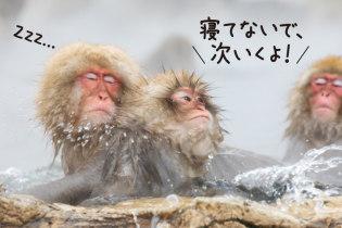 善光寺参拝や外湯巡りも 冬を楽しむ子連れ旅