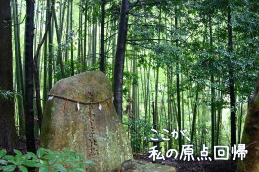 世界遺産・熊野三山へ2泊3日の一人旅