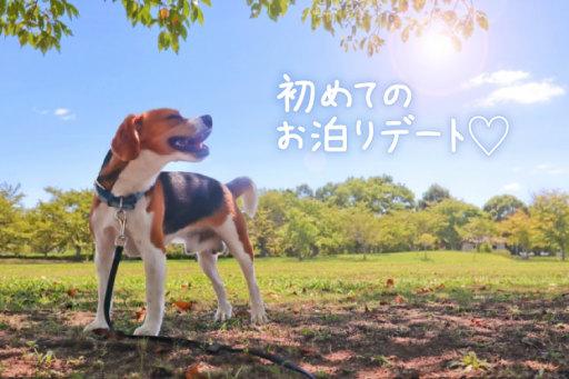 ワンちゃん連れOK!長崎おさんぽ温泉旅行