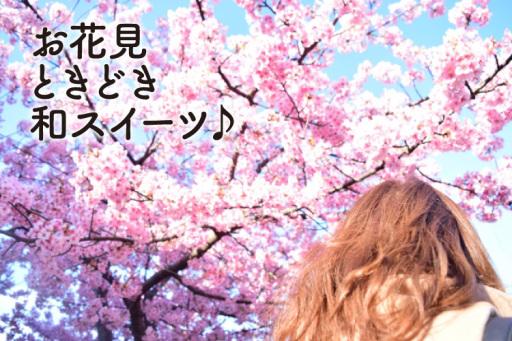 京都で日帰り桜と和スイーツを堪能旅