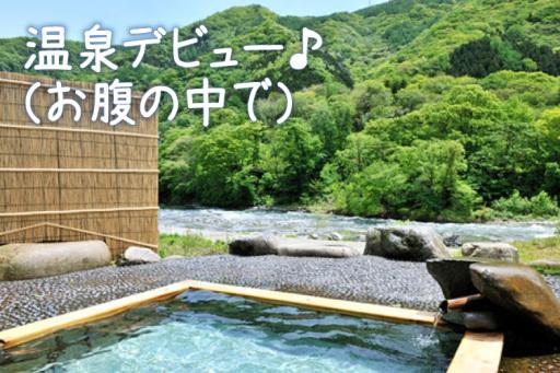 妊婦さんの観光も安心群馬で貸切温泉を満喫旅