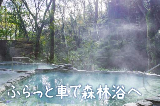 地魚と温泉を家族で満喫小田原周辺で日帰り旅行
