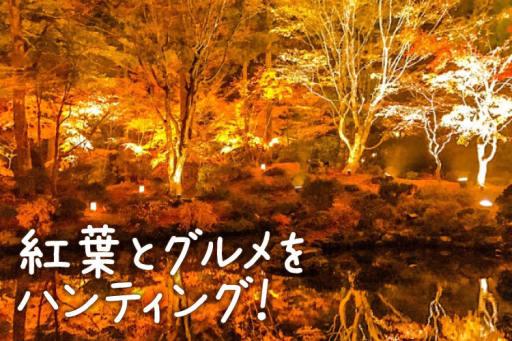 松島グルメや紅葉を満喫夫婦でパワーチャージ旅