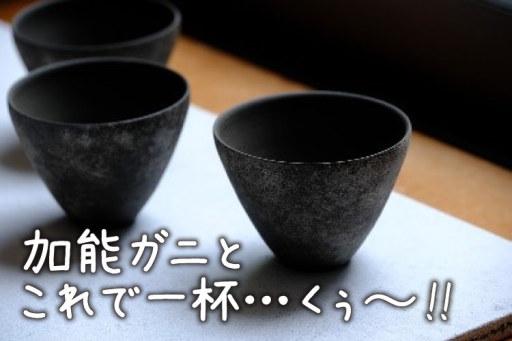 羽田→能登まで約60分食と酒を堪能する夫婦旅