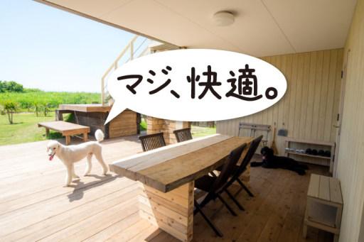 九十九里の貸別荘ステイ犬・恋人とリゾート旅