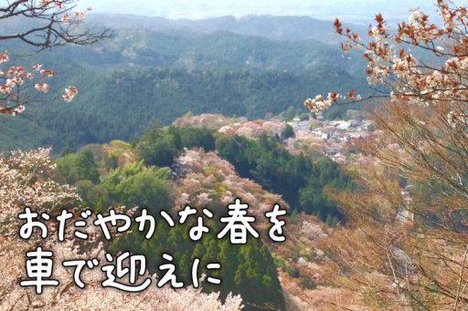 吉野山の桜にうっとり日本文化を感じる夫婦旅