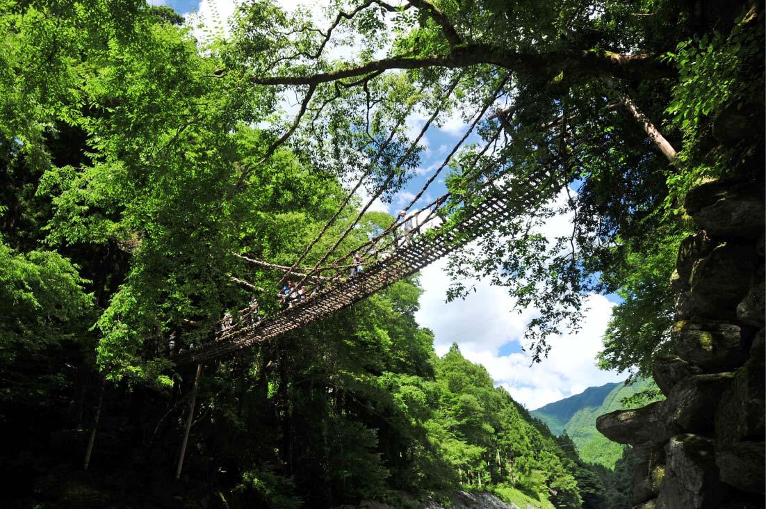 追手から逃れるためいつでも切り落とせるようにかずらという植物を使ってかけたという平家伝説ゆかりの「かずら橋」