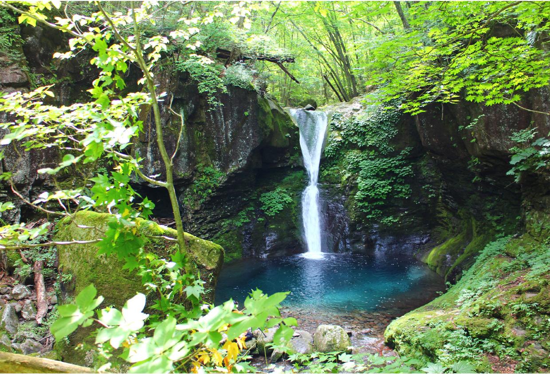 木漏れ日と濃い緑、滝のブルーが神秘的