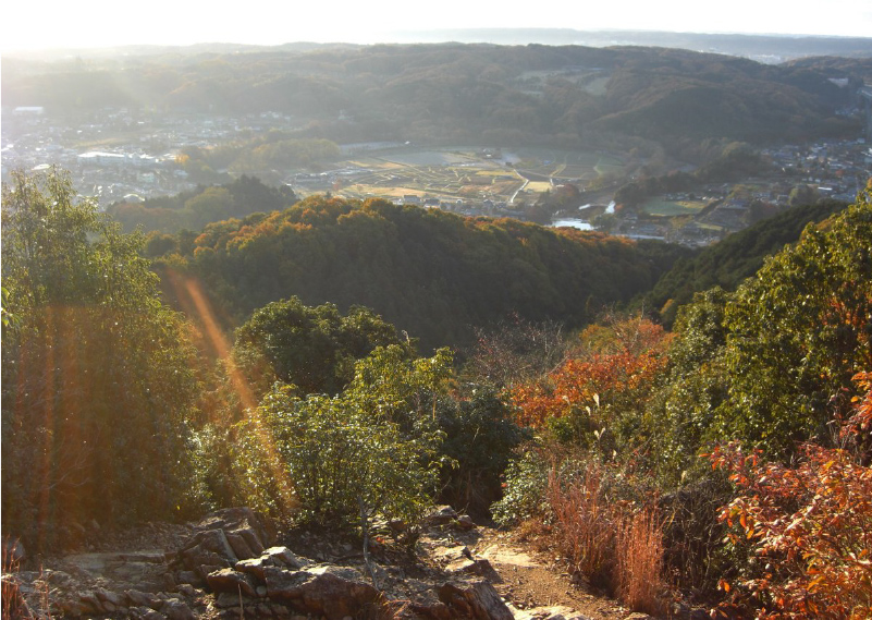 超初級者でも安心 眺めのいい日和田山へハイキング[日高市]