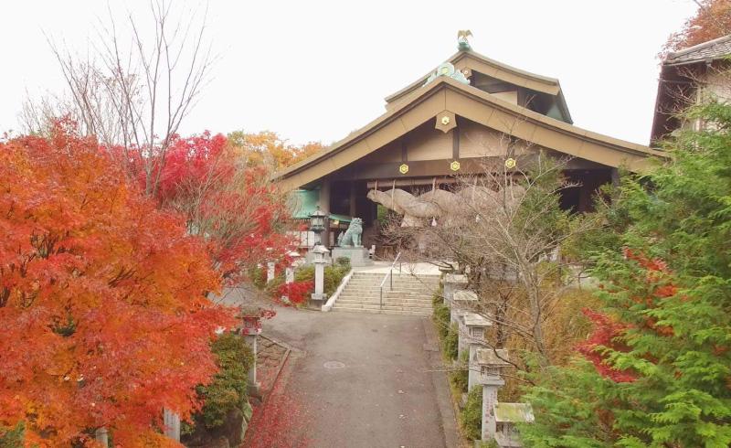 拝殿の正面に掛けられている大しめ縄は、長さ16m、重さ6tと、こちらも見物