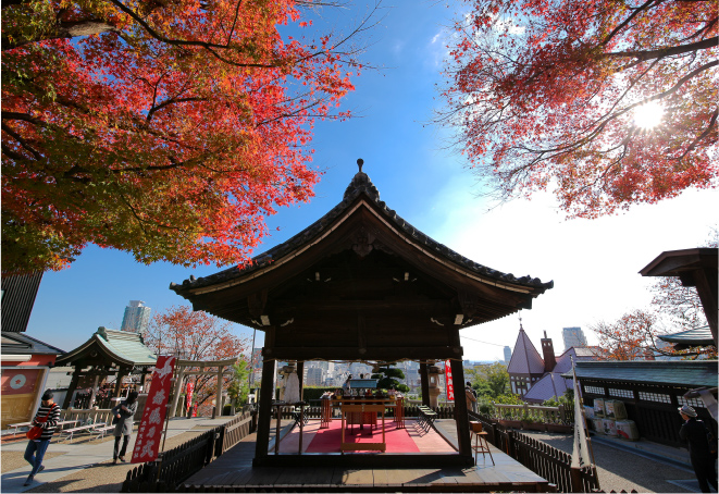 境内の中央には舞の奉納や神前挙式などが行われる拝殿がある