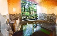 越後田中温泉 しなの荘
