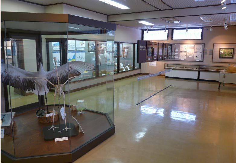 釧路市丹頂鶴自然公園