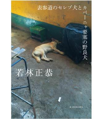 『表参道のセレブ犬とカバーニャ要塞の野良犬』