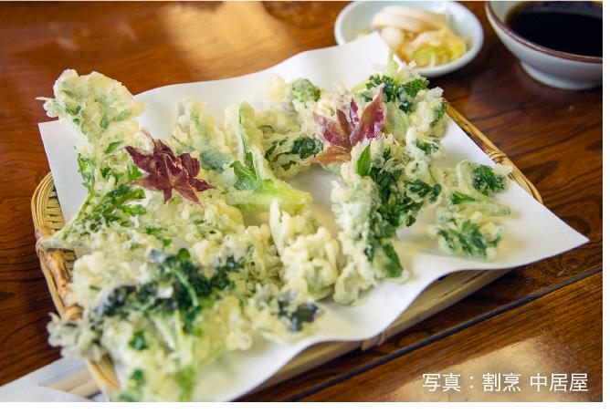 山菜 写真:割烹 中居屋
