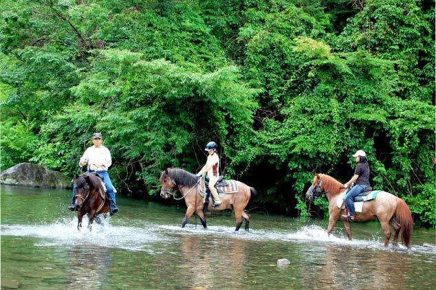 馬に乗ってホテル敷地内の森のほか川などを散策