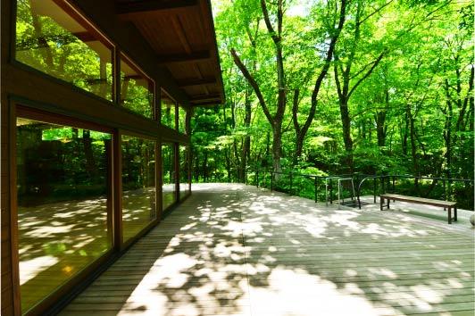 小阿寺沢(こあてらさわ)に面したテラスでは、毎日朝ヨガを開催