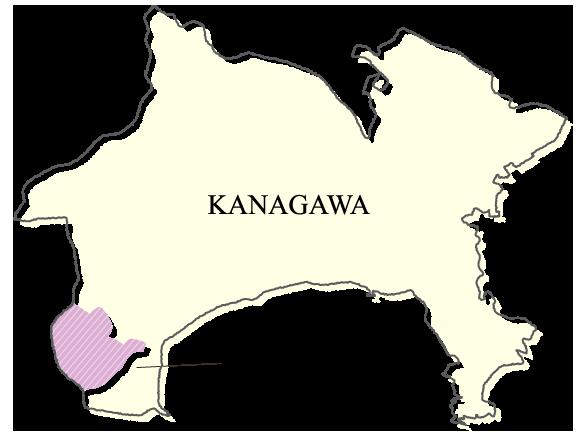 箱根町(神奈川県)