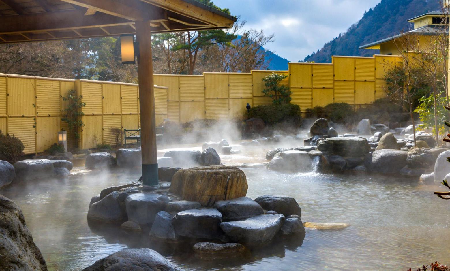 効能もあって絶景も独り占め。それが箱根温泉の常識