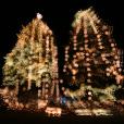 """テーマのあるスイーツ旅 日本の""""クリスマス""""スイーツを知る旅"""