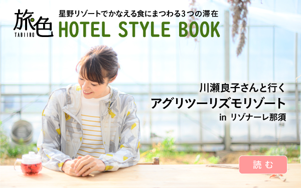 HOTEL STYLE BOOK
