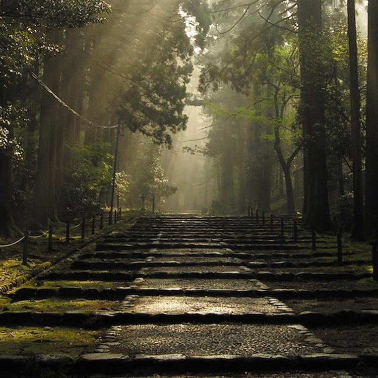 「加賀・越前」石川県・福井県 聖地と美味を巡る 北陸冬紀行