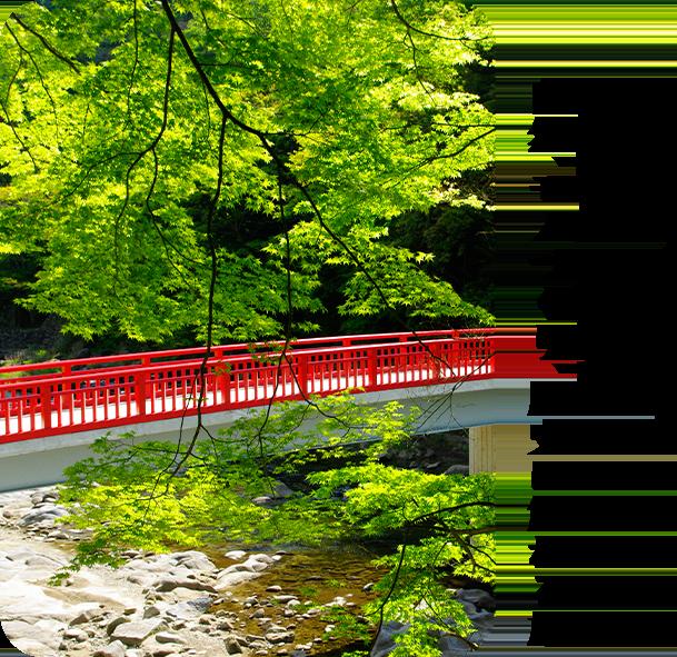エリアフィーチャー「豊田市」愛知県 自然、モノづくり、歴史に触れる旅