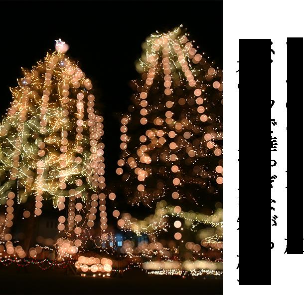 """テーマのある旅 気日本の""""クリスマス""""を知る旅へ"""